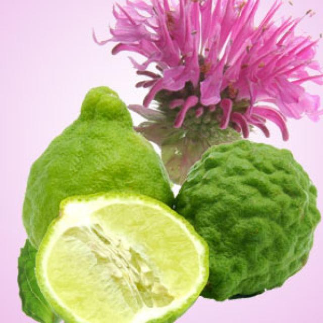 Olejek zapachowy - Imbir i bergamotka - do produkcji świec, mydła, kremów, balsamów, toników i innych kosmetyków