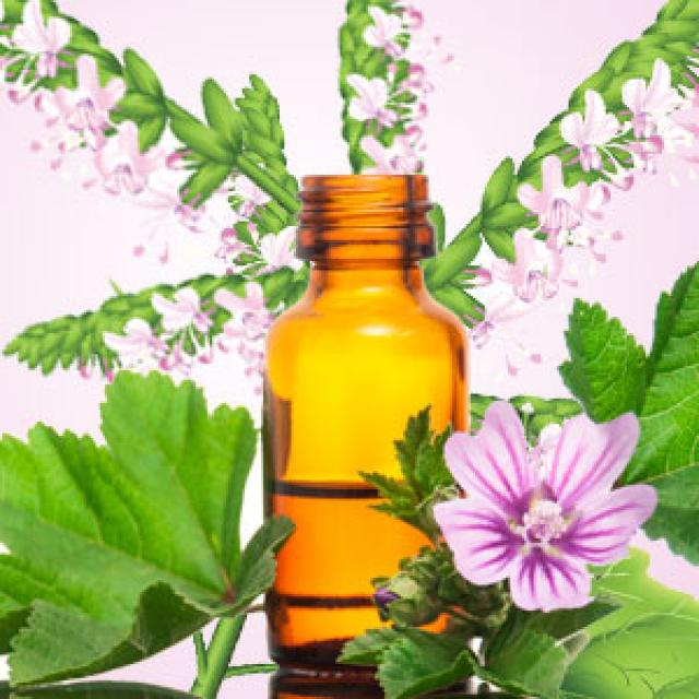 Olejek zapachowy - Paczula - do produkcji świec, mydła, kremów, balsamów, toników i innych kosmetyków
