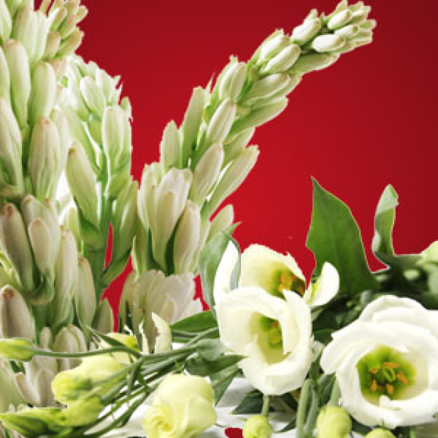 Olejek zapachowy - Księżycowa Tuberoza - do produkcji świec, mydła, kremów, balsamów, toników i innych kosmetyków