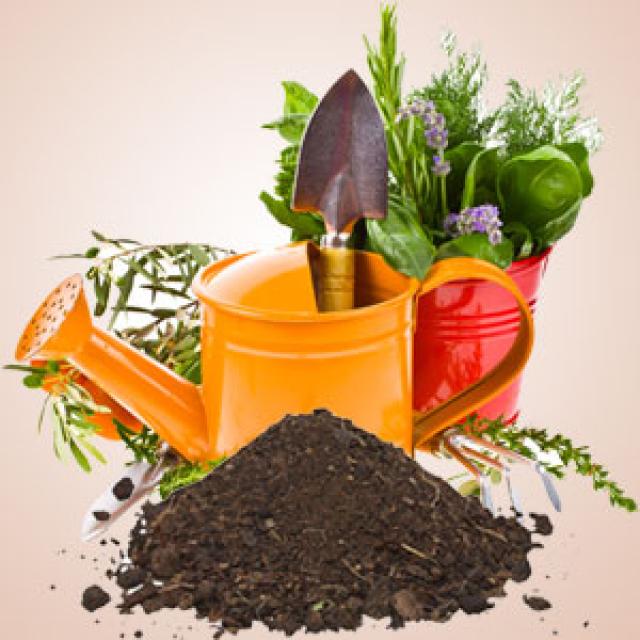 Olejek zapachowy - Gleba ogrodowa - do produkcji świec, mydła, kremów, balsamów, toników i innych kosmetyków