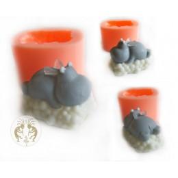 Hippo na chmurze