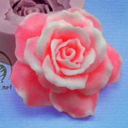 Róża 3D