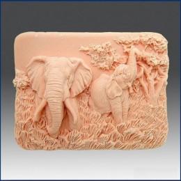 Czarujące słonie