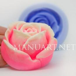 Róża #2