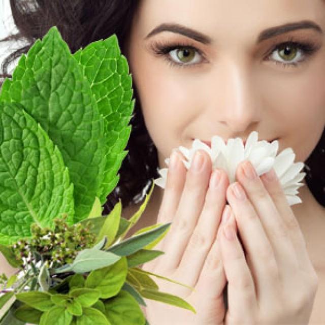 Olejek zapachowy - Sinus Relief - do produkcji świec, mydła, kremów, balsamów, toników i innych kosmetyków