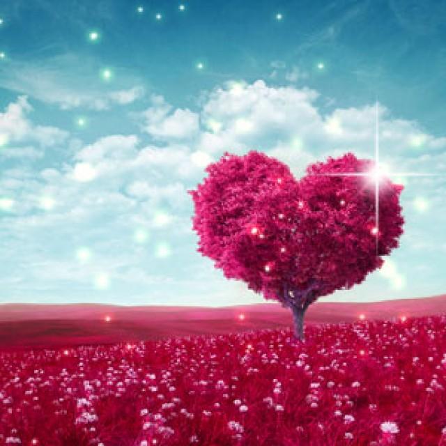Olejek zapachowy - Endlessly in Love - do produkcji świec, mydła, kremów, balsamów, toników i innych kosmetyków