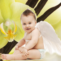 Angel Wings 30 ml (Skrzydła anioła)