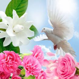 Spiritual Awakening 30 ml (Duchowe przebudzenie)
