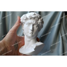 Forma silikonowa - Wielka głowa Dawida 3D - do wyrobu mydła, świec i odlewów