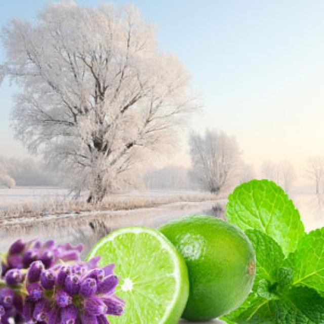 Olejek zapachowy - Ogród zimowy - do produkcji świec, mydła, kremów, balsamów, toników i innych kosmetyków