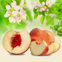 Kwiaty białej brzoskwini i jedwabiu