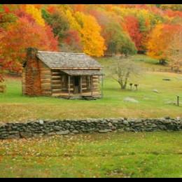 Dom we wsi